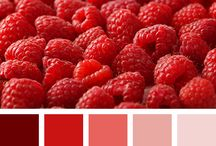 Things Monochromatic / monochromatic colour combinations