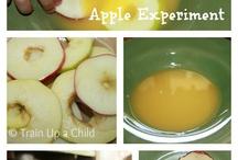 September: apple unit study