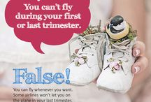 MYTH 2: You can't Fly During Your First Or Last Trimester