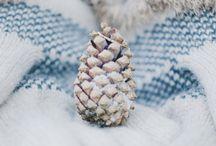 HIVER - WINTER / Photos d'hiver