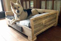 Venia / Dog bed