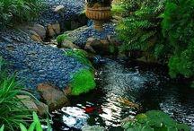 Aranżacje wodne