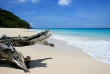 Last Minute And Fill the Spot Travel Deals / Antigua 7 Day Culinary Adventure Tour Package Feb. 22-28 includes: Round Trip Tickets from MIA, Accommodations, Meals, Excursion. Shopping, Cooking Class, Spa treatment & Fun. For fill the spot specials rates contact Freda http://www.caribbeanculinarytours.net