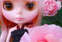 Dolls collection / My Blythe doll collection.