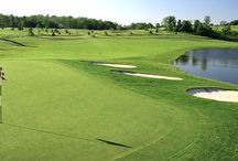 Golf is Great in Rochester and the Finger Lakes / Over 60 public and semi-public golf courses, golf shows and championships make Rochester, NY a golf destination.
