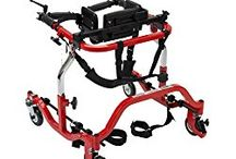 Therapist-Recommended Mobility Devices