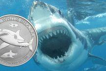 Silbermünzen (AU) Perth-Mint