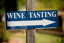 Wine Tasting / Wine Tasting is one of our biggest passions. Some pictures are really amazing!