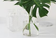 Dekoráció: levél vázában