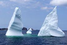 Love Newfoundland