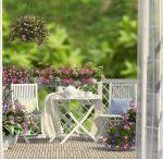 Balkon & Bahçe Dekorasyon