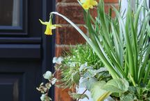 """Style Guru Selina Lake Showcases Solidor / Interior Stylist, Blogger and Author Selina Lake has featured Solidor in her latest article on the Homestyle website  """"Spring Style Entrance"""".  In the article Selina gives tips on how to decorate  your front door and welcome guests into your home in time for the Easter celebrations this coming weekend. To read the full Home Style online article please click here Click here to create your own dream entrance with Solidor"""