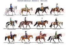 western dressage
