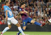 FC Barcelona / All about the best team ever  - Més que un club!