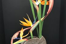 floral design; featured plant material