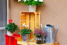 Gardening, balcony and flower