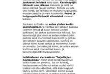 Ulos oppimaan/ Metsämörrijutut/ Myllykankaan koulu Sari Salo