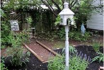Garden / Gardening Ideas / by Lorice Amlin