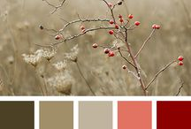 Nature colors
