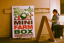 Events / Minifarmbox events and pop up sales