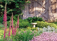 Garden Ideas / by Christine Zubs