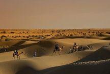 Séjour au Rajasthan, Voyage et Vacance Rajasthan