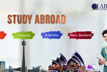 Aries International | Study Abroad Consultants / Aries International is a immigration and study abroad consultants with offices in Dubai, Kochi, Mumbai, Cairo, Canada and Melbourne. We have more than a decade of experience in the field of migration and overseas education.