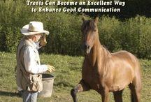 Horse Training with Treats