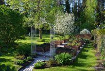 Our vernal garden 2014 / Our vernal garden in May 2014