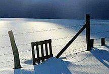 Seasons: Winter / Photo gallery dedicated to Winter.