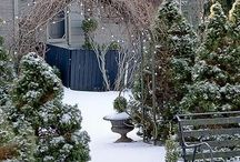 Beautiful Winter Scenes / by Jules Aviles
