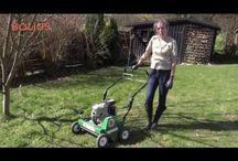Græsplæne | Lawn / Græsplænen skal passes og plejes, med mindre du synes det er ok med lidt mos og mælkebøtter