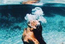 Underwater Poses