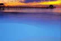Florida / by Stephanie Brown