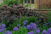 Cotswold Gardens / Some of the finest gardens in England can be found in the Cotswolds.