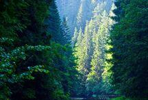 Slovakia Natur