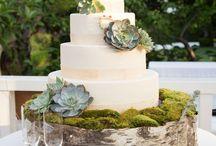 Rustic Succulent Wedding