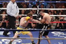 It's FIGHT NIGHT at MGM Grand Garden Arena / The Grand Garden Arena comes to life every Fight Night when boxers or UFC fighters go toe to toe live from MGM Grand.