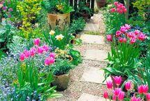Wiejskie ogrody