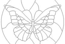 mariposa vitro