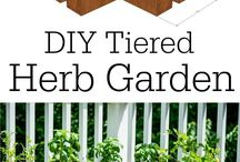 raised beds for herb garden