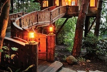 Tree Houses / by Diana Brown-Meyer
