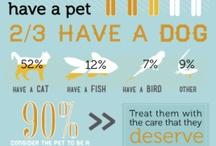 Pet visuals / Infographics for Pets.