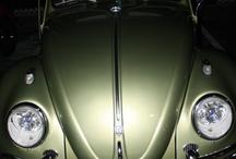 Slug Bugs / Our favorite Beetles.
