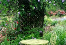 Garden and landscape / Images of my own garden and farm  and other inspiring garden and lanscape ideas