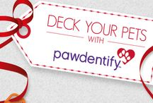 Christmas Pet Tags & Stocking Stuffers / Christmas & winter season pet ID tags for dogs and cats by Pawdentify. Each ID tag comes with a Links-It to attach tags to collars quickly and easily. Made in the USA. Lifetime guarantee.
