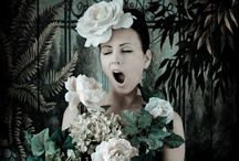 Kirsty Mitchell's