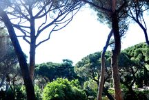 Vacation in France, Cote de Azur