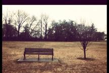 my surroundings