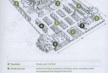 yard layout